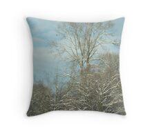 desolate snow Throw Pillow