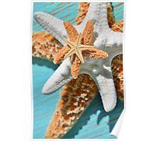 Starfish Stack Poster