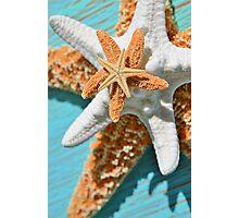 Starfish Stack Photographic Print