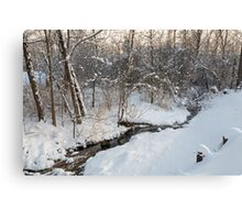 Snowy Brook Canvas Print