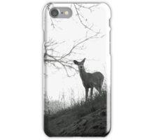 Cherry Creek Wilderness  iPhone Case/Skin