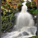 Dunsop Bridge Waterfall by Shaun Whiteman