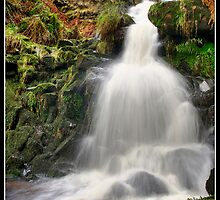Dunsop Bridge Waterfall by Shaun Whiteman