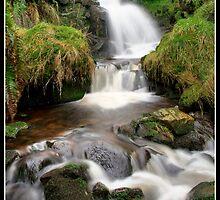 Dunsop Bridge Waterfall 2 by Shaun Whiteman