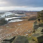 The View From Here by NaturalBritain