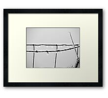 Icy barbed wire Framed Print