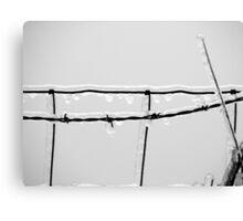 Icy barbed wire Canvas Print