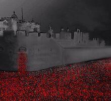 Tower of London Poppy Rememberance  by Karen Harding