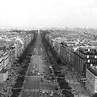 Triumphant View by brandonsorrell