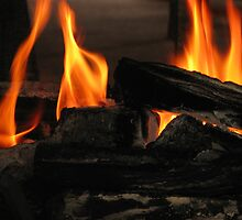 Come Join Me By The Fire! by Diane Schuster