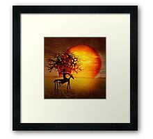 Visions of fire Framed Print