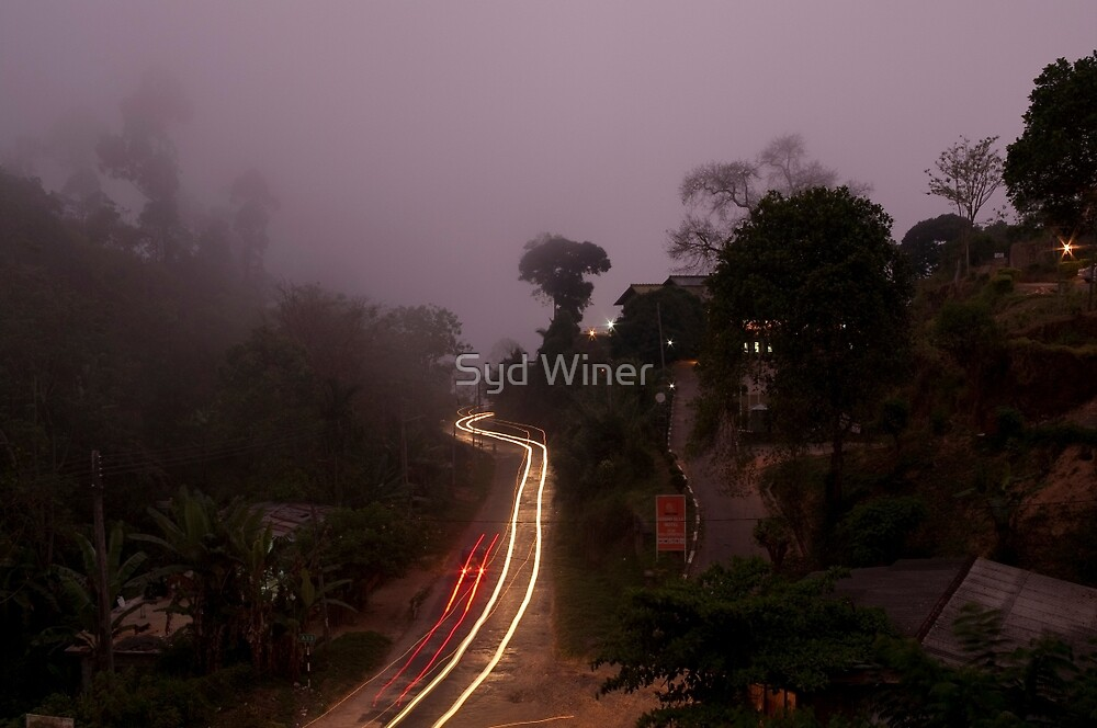 Guest house view - Ella, Sri Lanka by Syd Winer