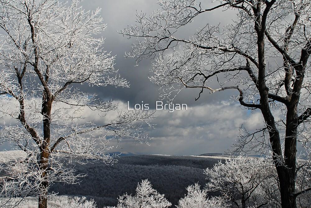 My Sunday - 3 by Lois  Bryan