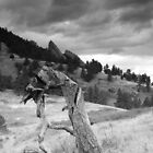 Mesa Trail Boulder, Colorado by Paul Crossland