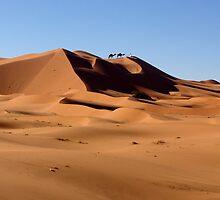 SAHARA DUNES - MOROCCO by Michael Sheridan