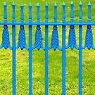 Blue fence around Irish green by Arie Koene