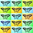 butterfly bliss by cathyjacobs
