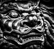Dragon by Zohar Lindenbaum