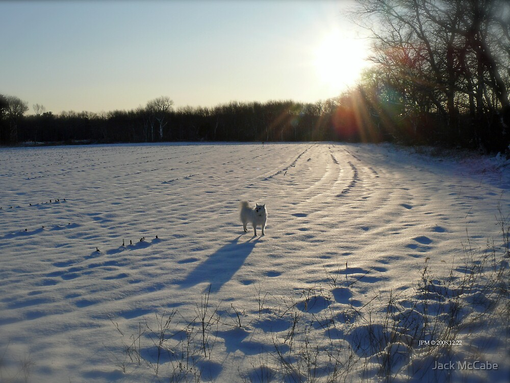 Streaming Sunlight Strikes Snow Aglowing Afternoon Light by Jack McCabe