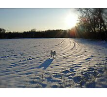 Streaming Sunlight Strikes Snow Aglowing Afternoon Light Photographic Print