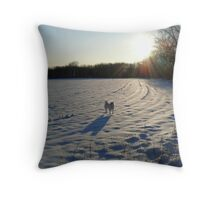 Streaming Sunlight Strikes Snow Aglowing Afternoon Light Throw Pillow