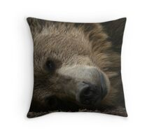 The Eye of the Beast Throw Pillow