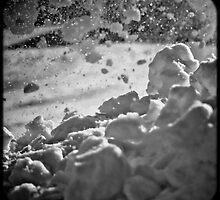 Winter Worry by andapanda