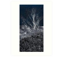 Winter Growth Art Print