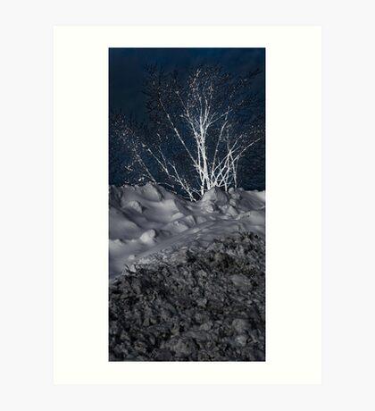 Winter Growth Art Print