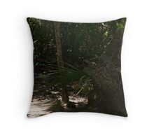 Wild Rooster Hide and Seek Throw Pillow