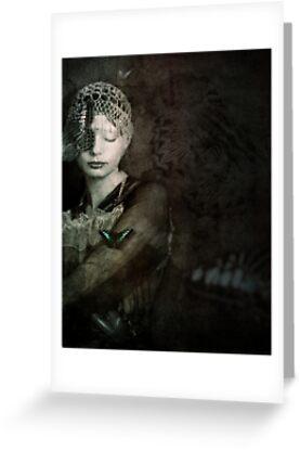 Stillness by Aimee Stewart