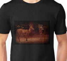 Illuminated Pair Unisex T-Shirt