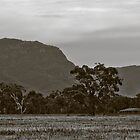 Grampians Attractions by Jennifer Craker
