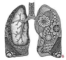 Lungs by ericajchen