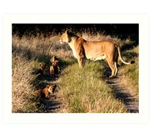 Lioness with cubs Art Print