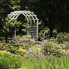 Summer in Richmond  by ANNABEL   S. ALENTON