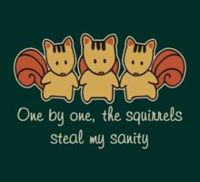 The squirrels steal my sanity by ironydesigns