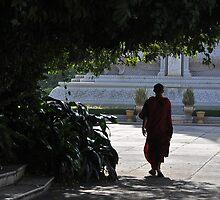 Monk by FlyAwayPeter