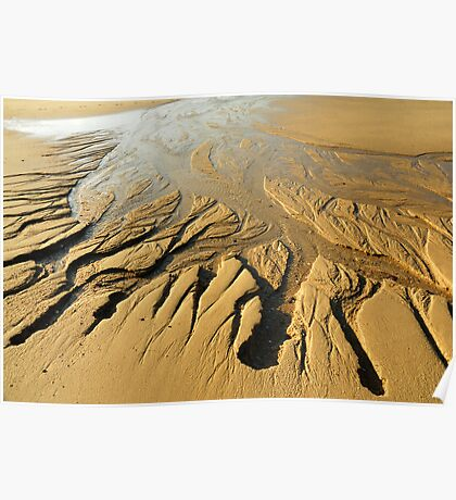 Sand burrows Poster