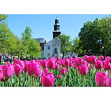 Halifax Spring fun Photographic Print