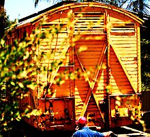 YOU'LL NEVER BELIEVE IT THERE'S A TRAIN CARRIDGE IN THE BACK YARD!!!!  by Marinapallett