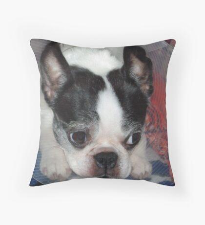Poor Luci Throw Pillow