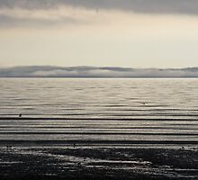 Low Cloud Forecast by hillphotography