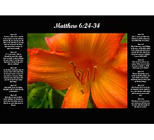 Matthew 6:24-34 Photographic Print