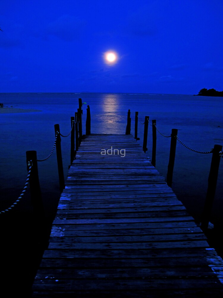 Bridge to the moon by adng