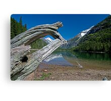 Avalanche Lake Canvas Print