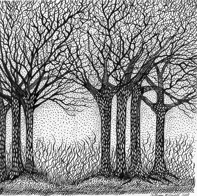 Winter Trees by Catherine  Howell