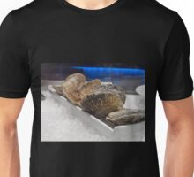 Closed oysters on ice Unisex T-Shirt