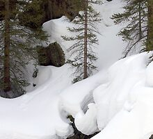 Wolfcreek Deluge by Jody Johnson