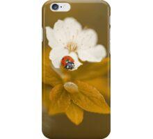 Beauty one iPhone Case/Skin
